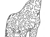 Realistic Beautiful Giraffe Coloring Page
