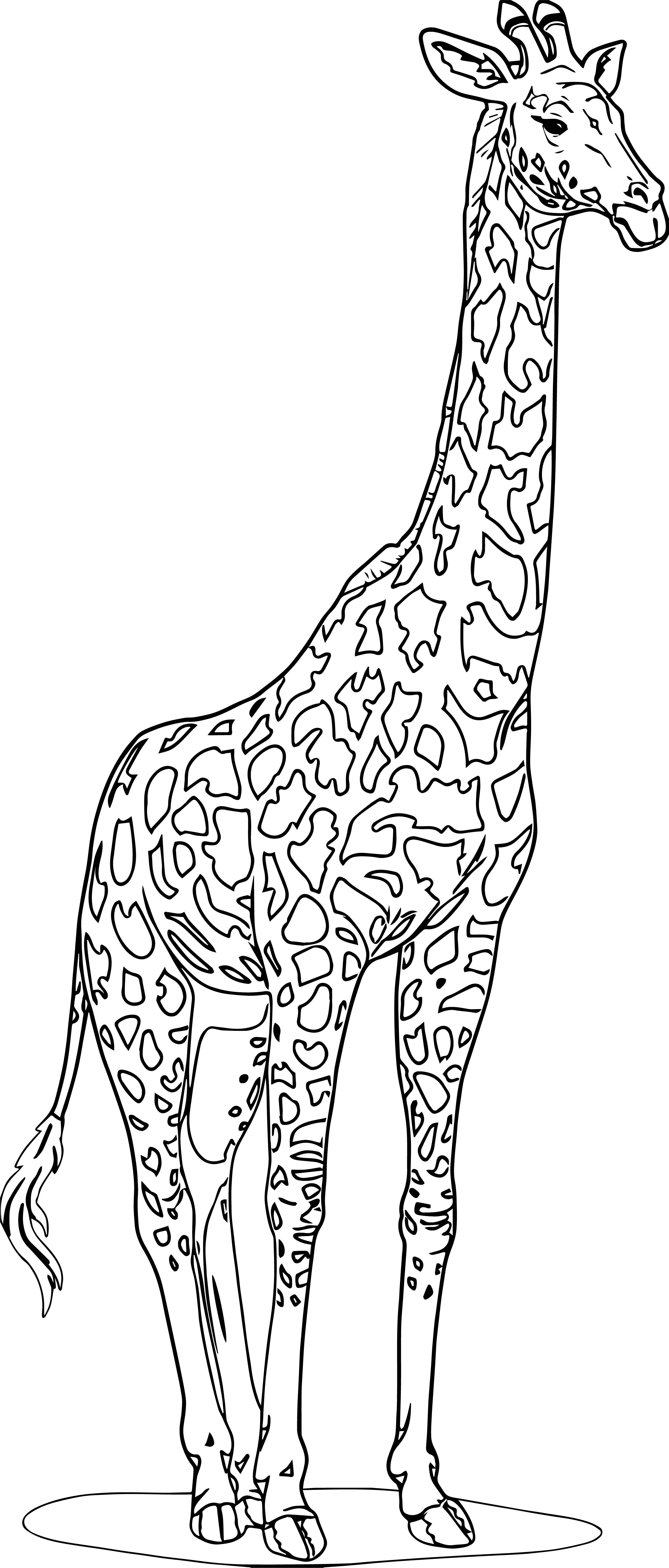 beautiful coloring pages realistic - photo#32