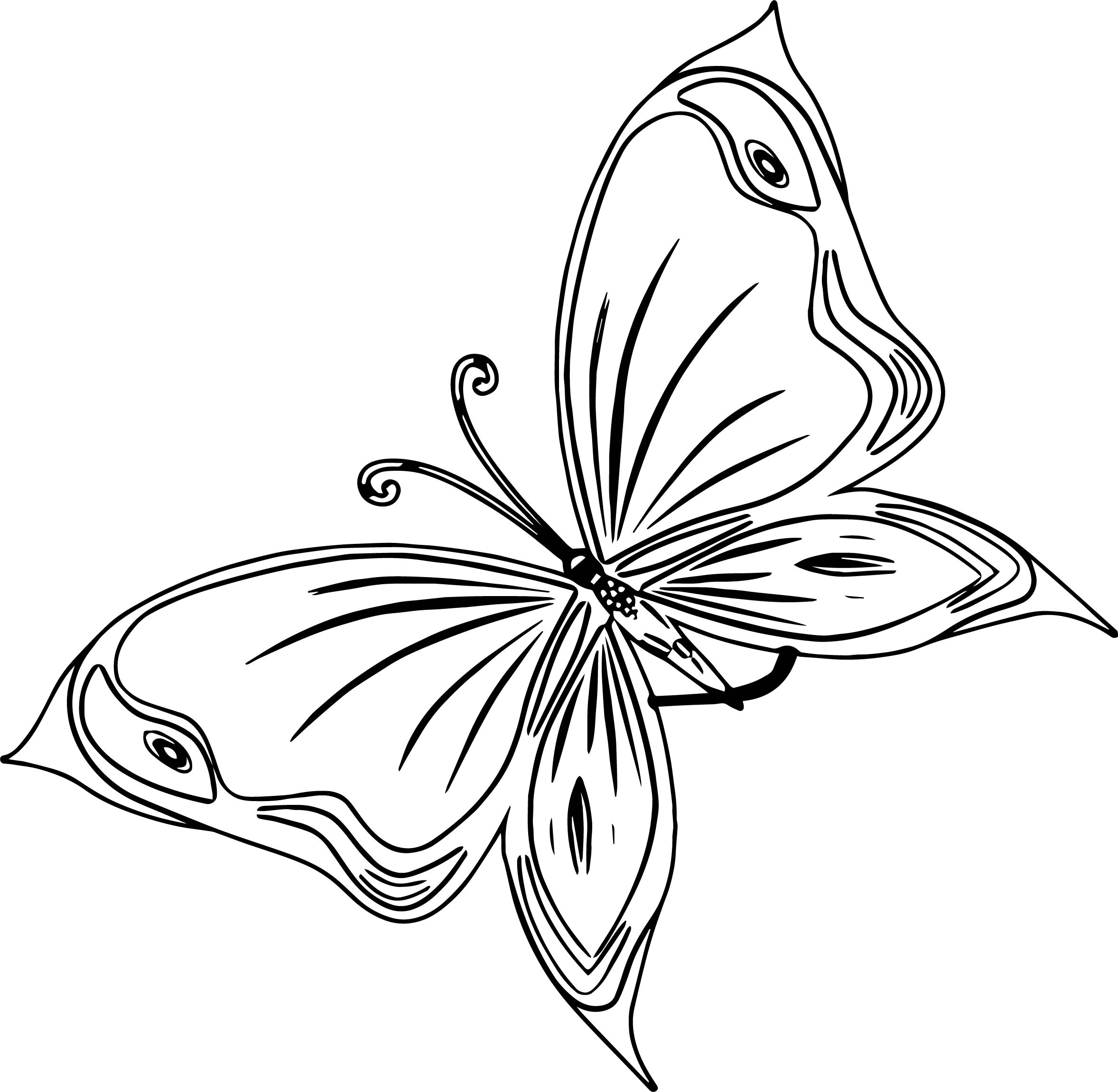 Red Butterfly Coloring Page
