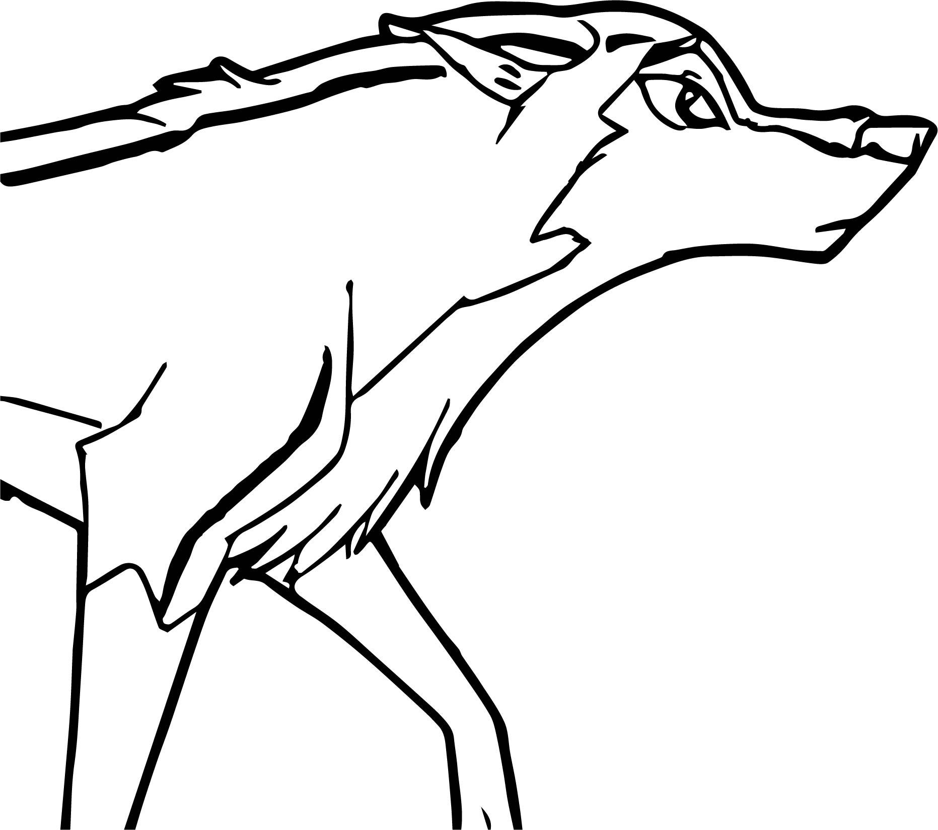 Aleu Wolf Coloring Page