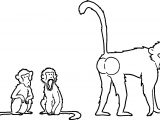Baboon What Coloring Page
