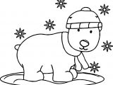 Bear Snow Coloring Page