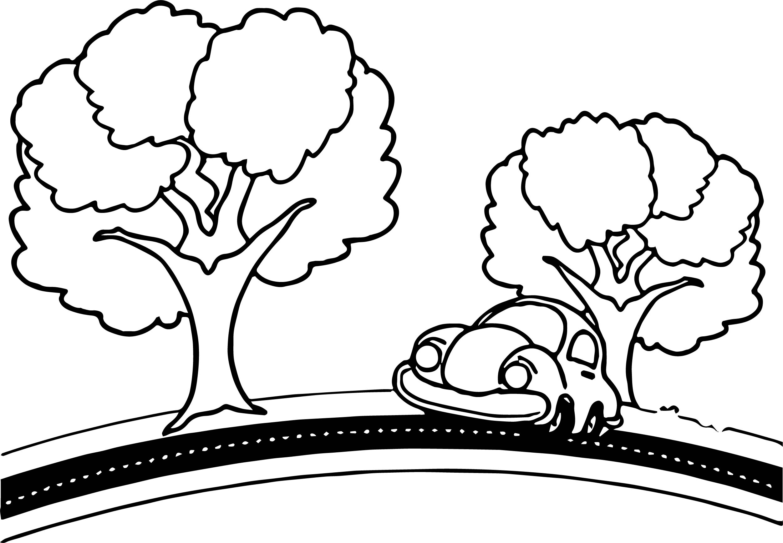 Car Tree Road Coloring Page on driving car