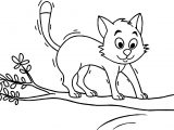 Cat On Tree Coloring Page
