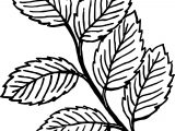 Fall Six Leaf Coloring Page