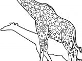 Giraffe Shadow Coloring Page