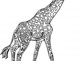 Giraffe Side Walk Coloring Page