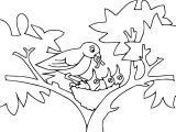 Mommy Bird And Kids Cartoon Funny Coloring Page