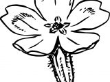 Primrose Flower Coloring Page