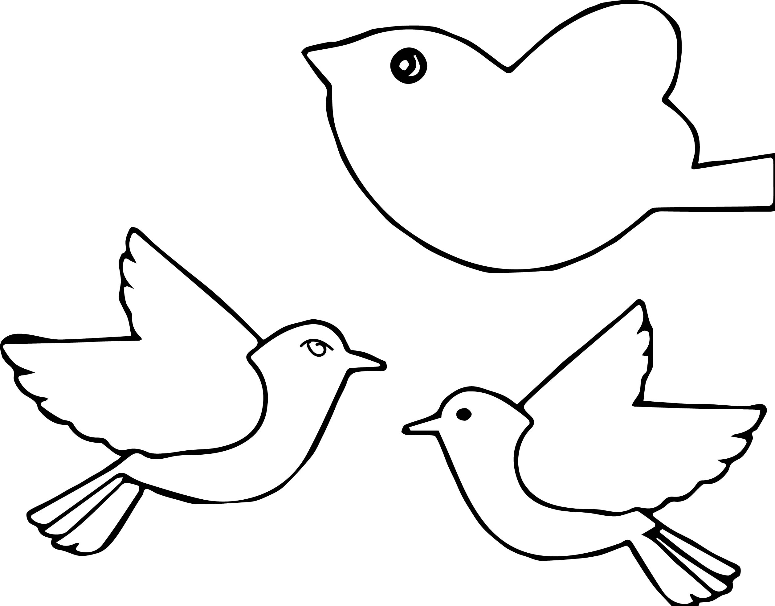 A Bird Coloring Page