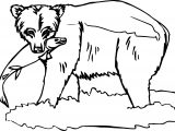 Are Bear Coloring Page