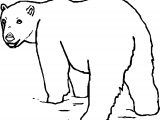 As Bear Coloring Page