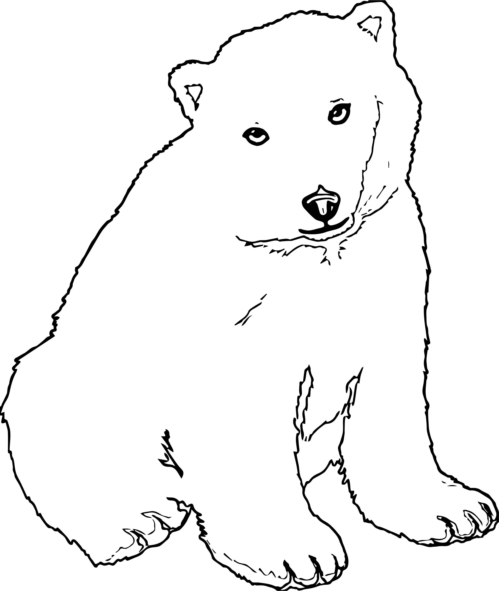 Ask Bear Coloring Page
