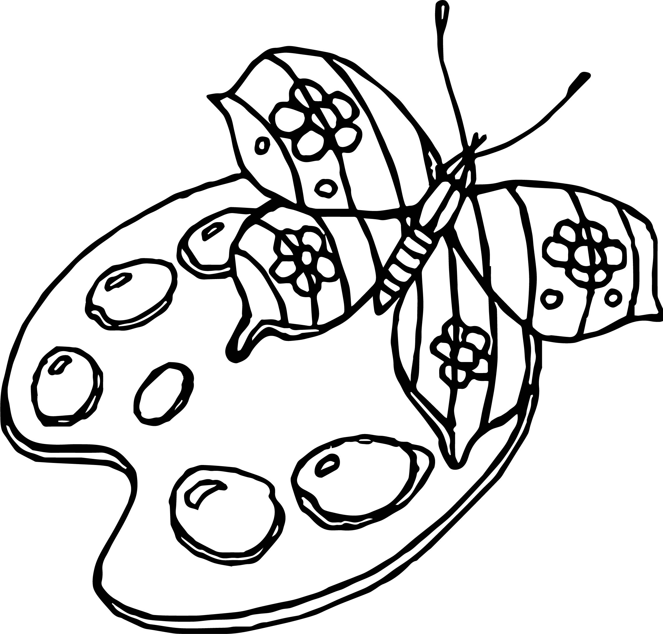 Butterfly Palette Coloring Page