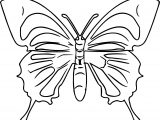 Butterfly Top View Coloring Page
