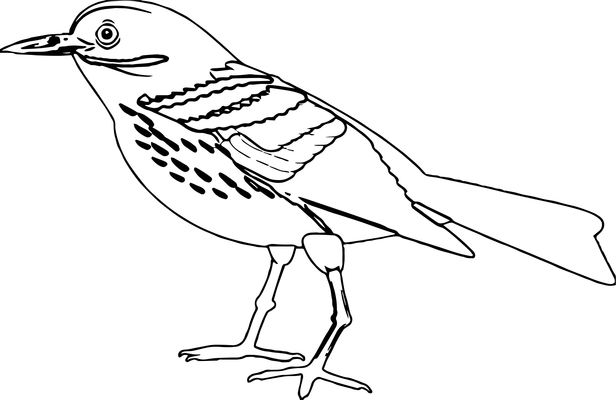 By Bird Coloring Page