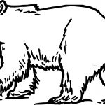 Change Bear Coloring Page