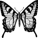 Dotting Butterfly Coloring Page