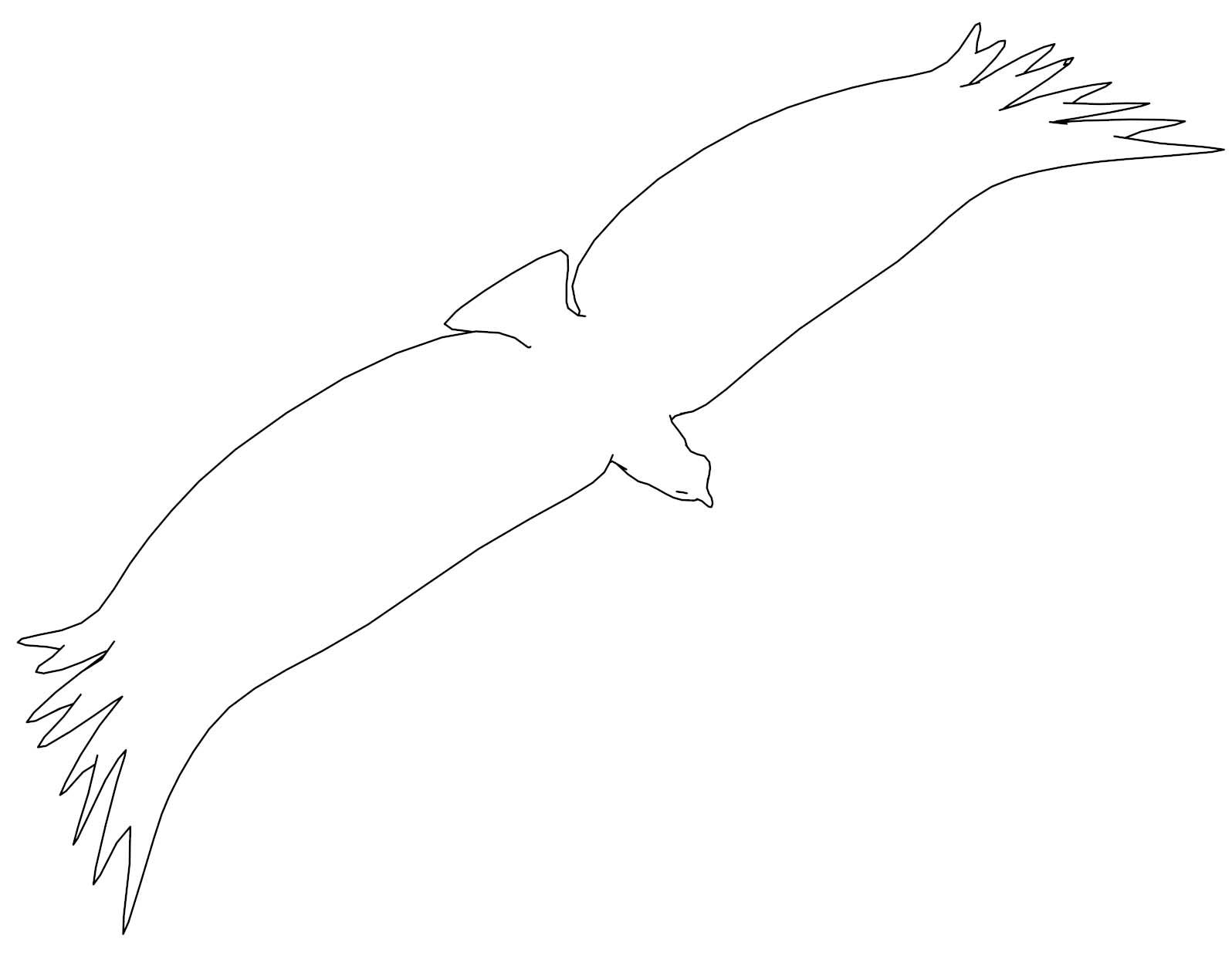 Eagle Outine Top View Coloring Page