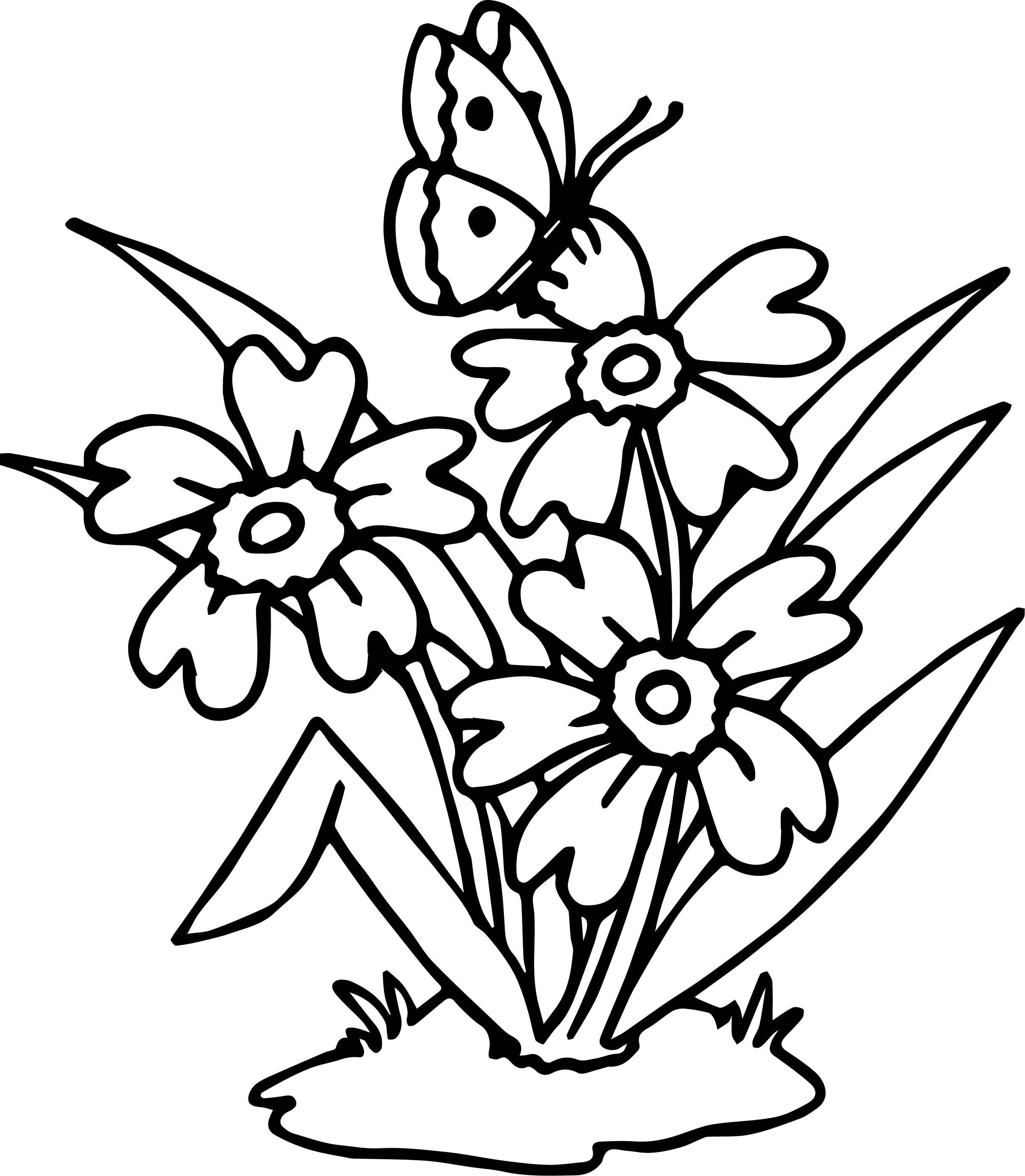 Flowers Butterfly Coloring Page | Wecoloringpage