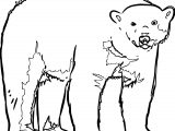 Follow Bear Coloring Page