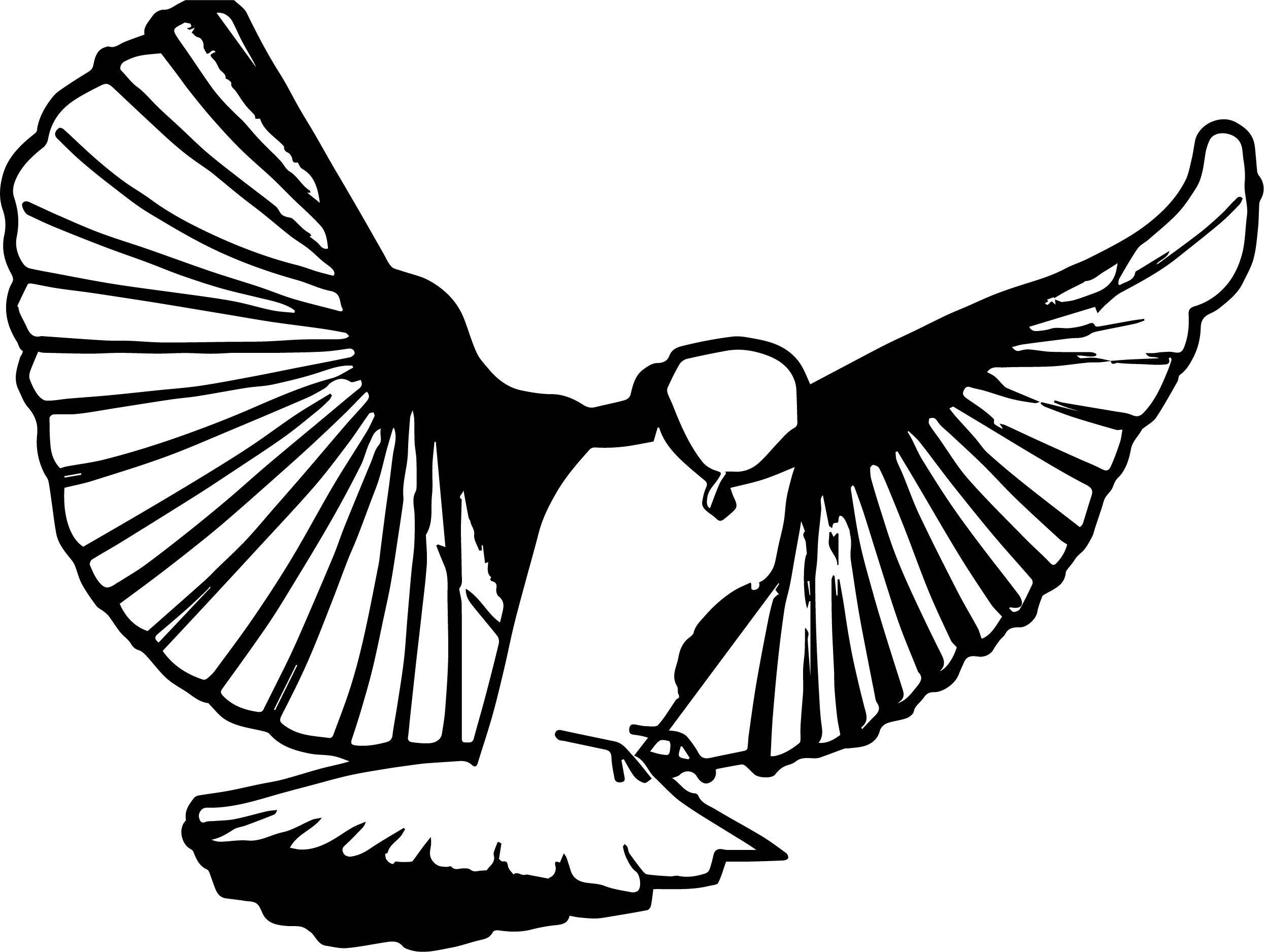 For Bird Coloring Page