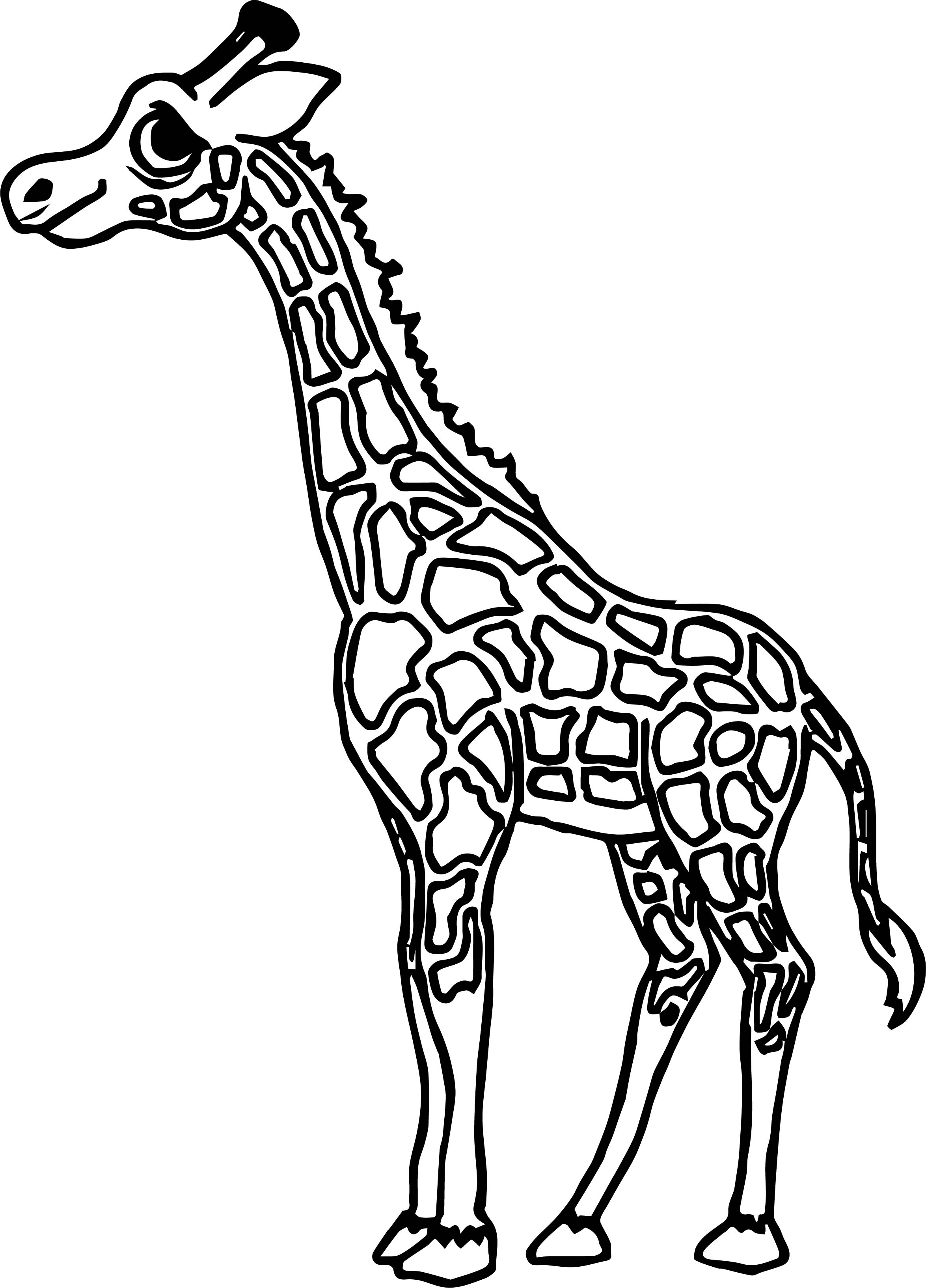 Giraffe Thinking Coloring Page
