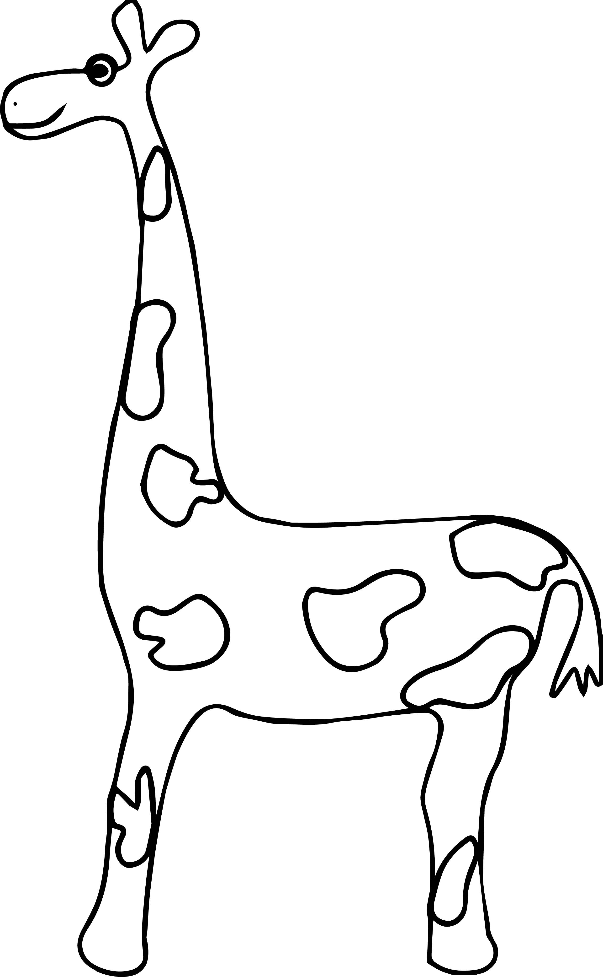 Giraffe Zealous Coloring Page