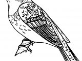 Hot Bird Coloring Page