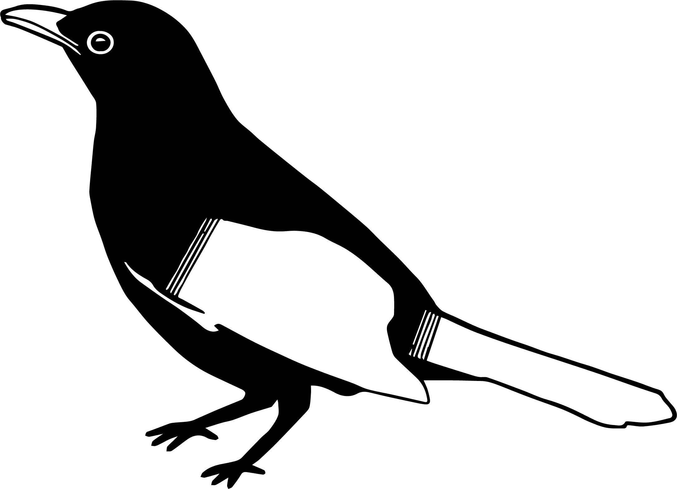 In Bird Coloring Page
