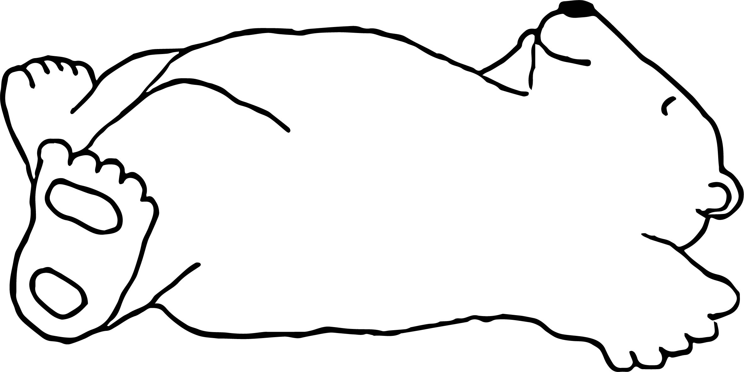 Light Bear Sleeping Coloring Page | Wecoloringpage.com