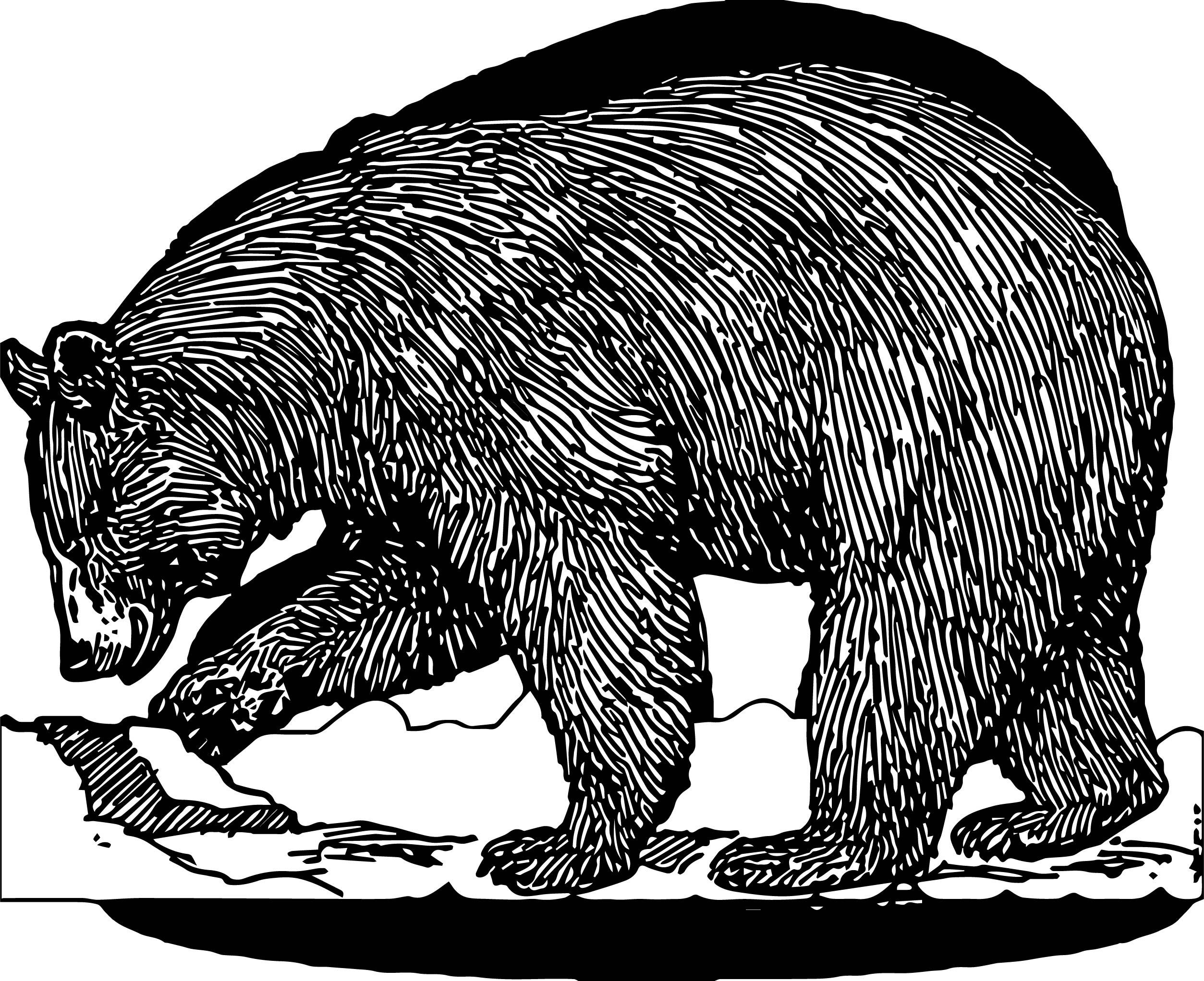 Make Bear Coloring Page