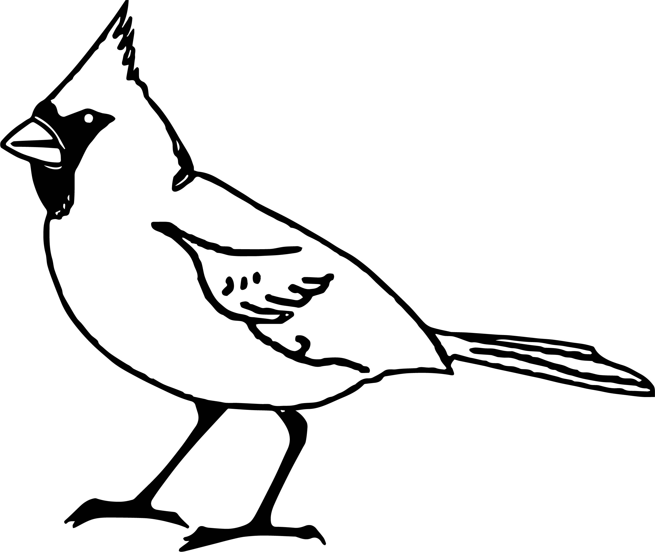 Or Bird Coloring Page