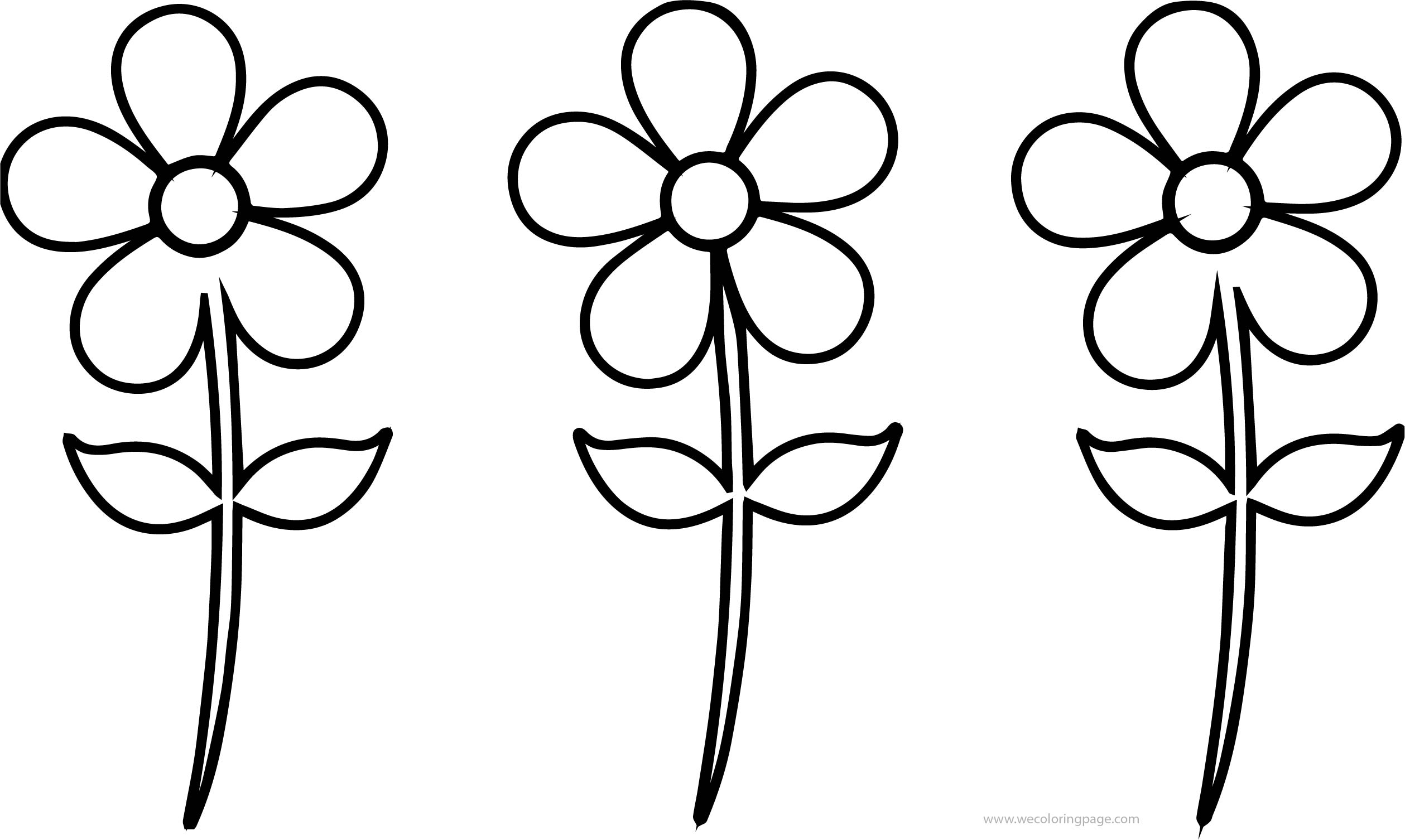 Spring Three Flower Coloring Page