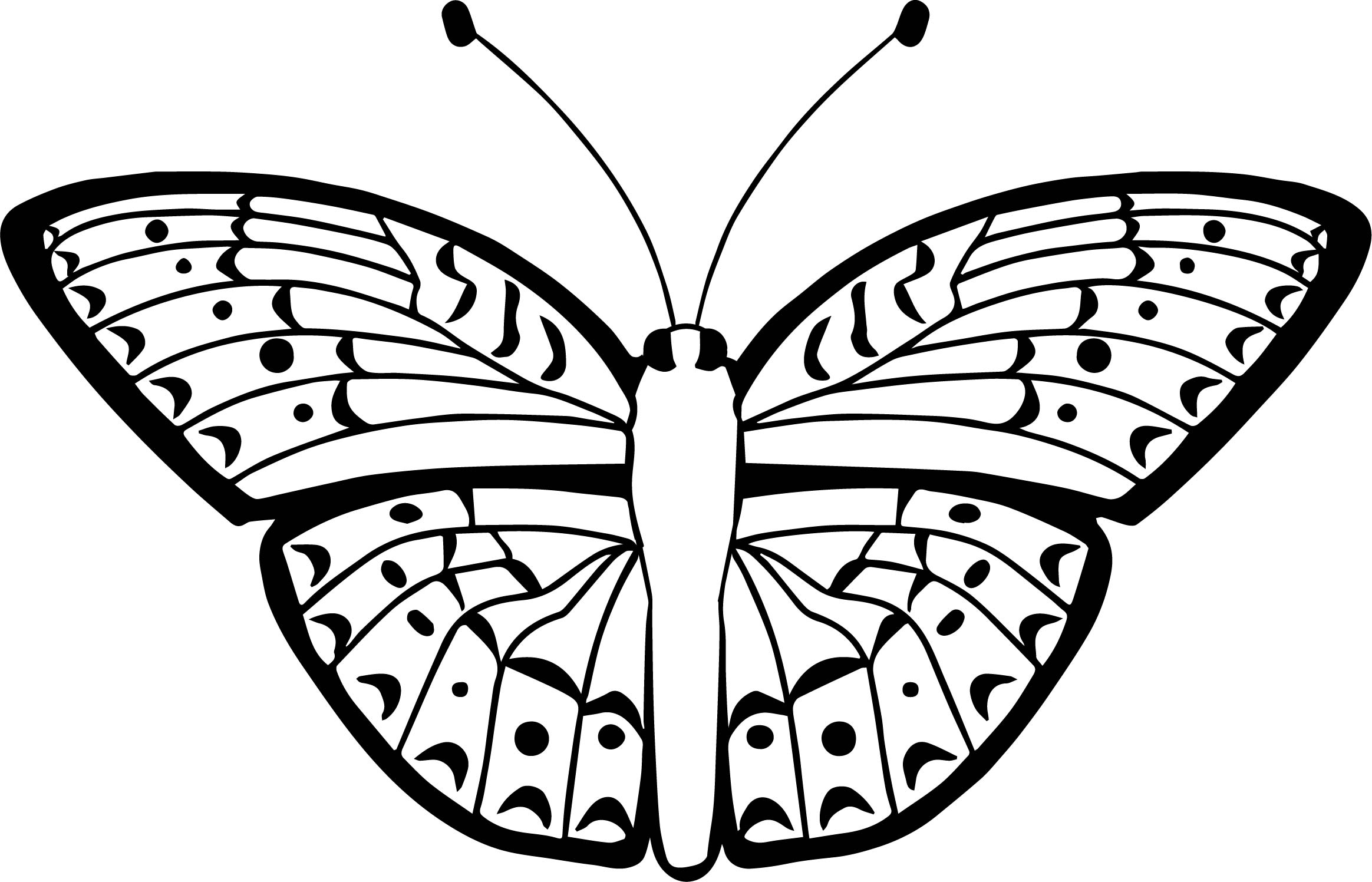 Top Butterfly Coloring Page