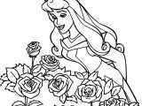 Disney Princess Sleeping Beauty At Disney Roses Coloring Pages