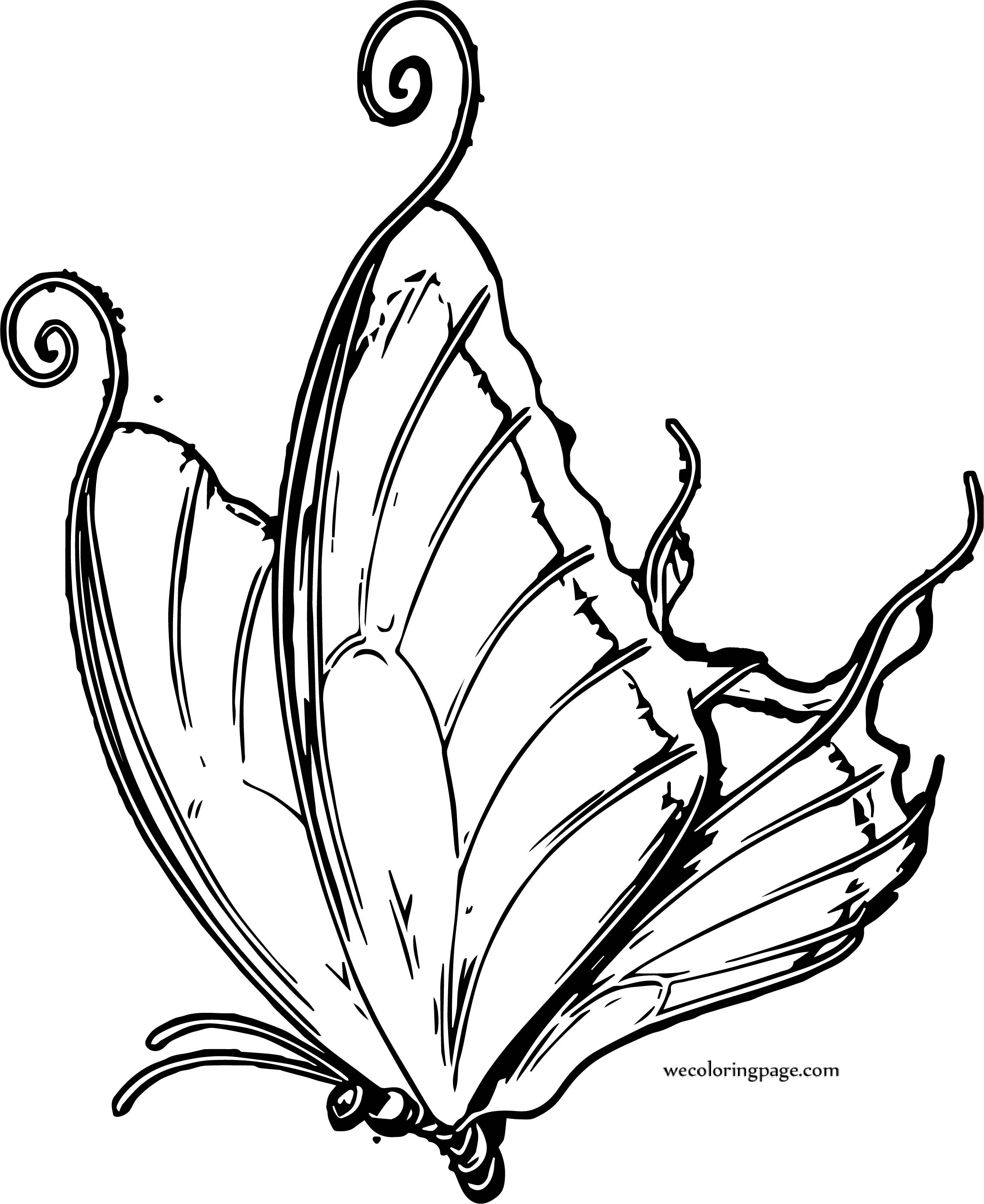 Drop Butterfly Coloring Page