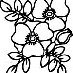 Flower Violet Coloring Page
