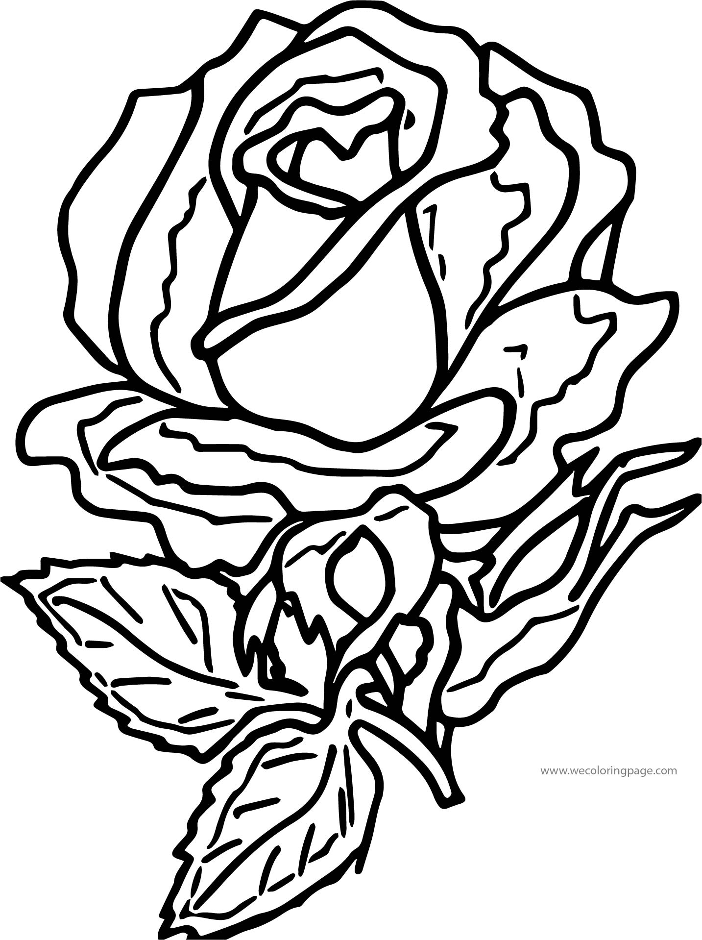 Free Rose Flower Images And Graphics Coloring Page