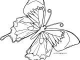 One Butterfly Coloring Page