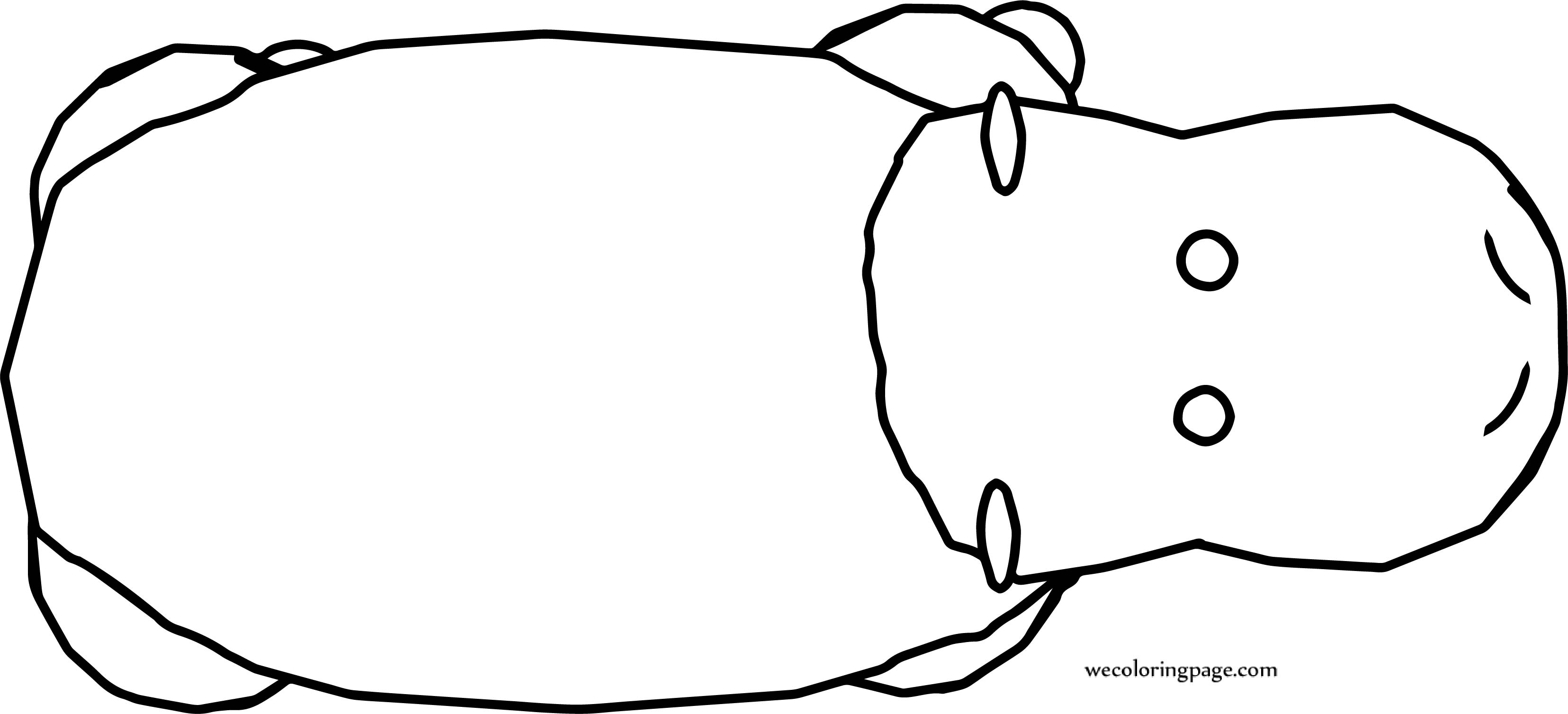 Rhinoceros Top View Coloring Page