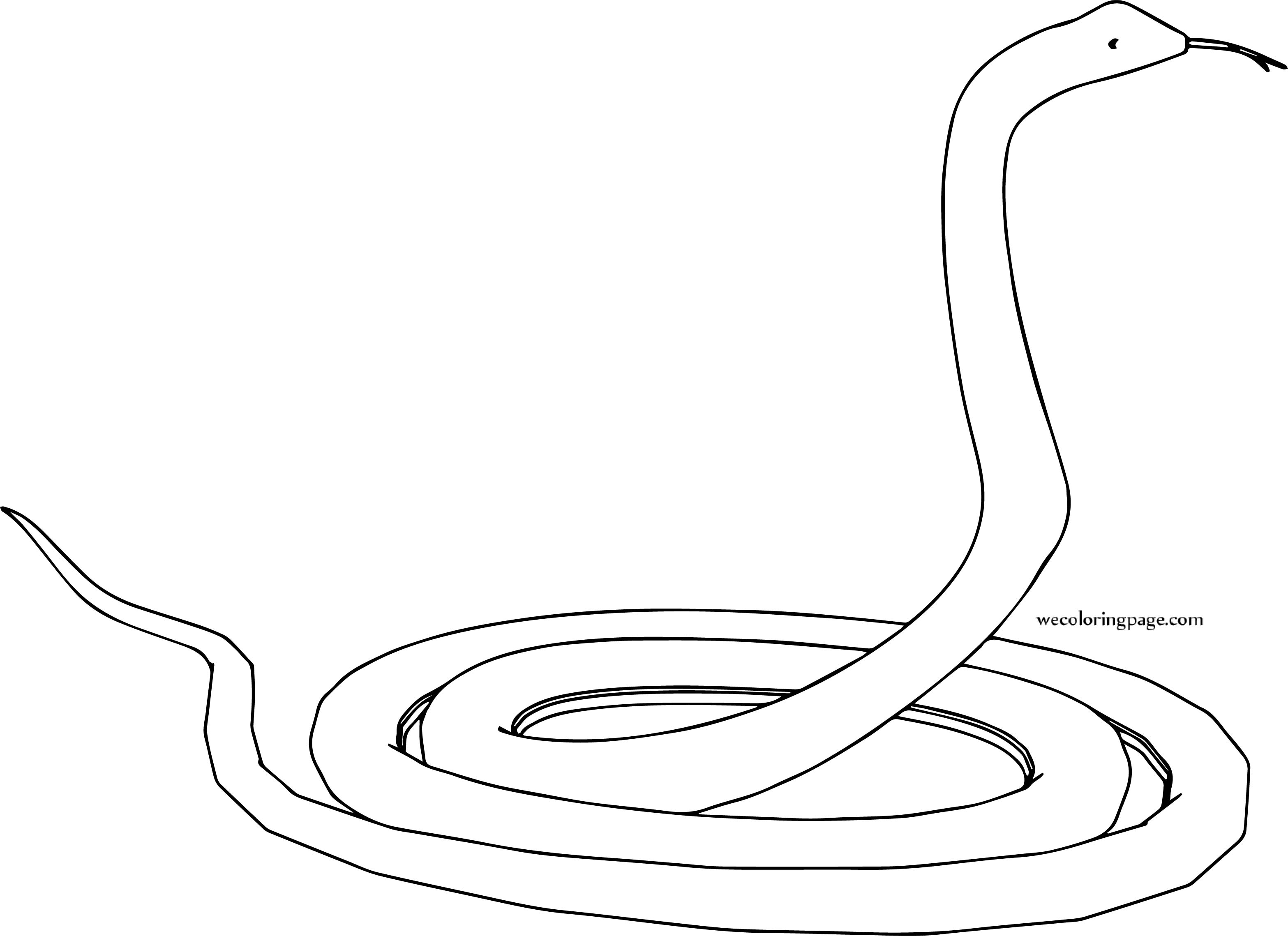 Snake Fold Coloring Page