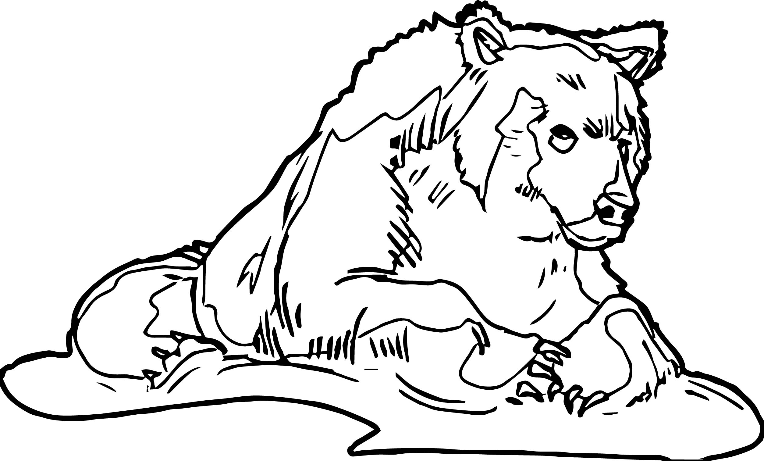 So Bear Coloring Page