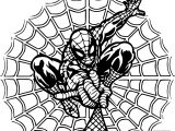 Spider Man Rope Net Coloring Page
