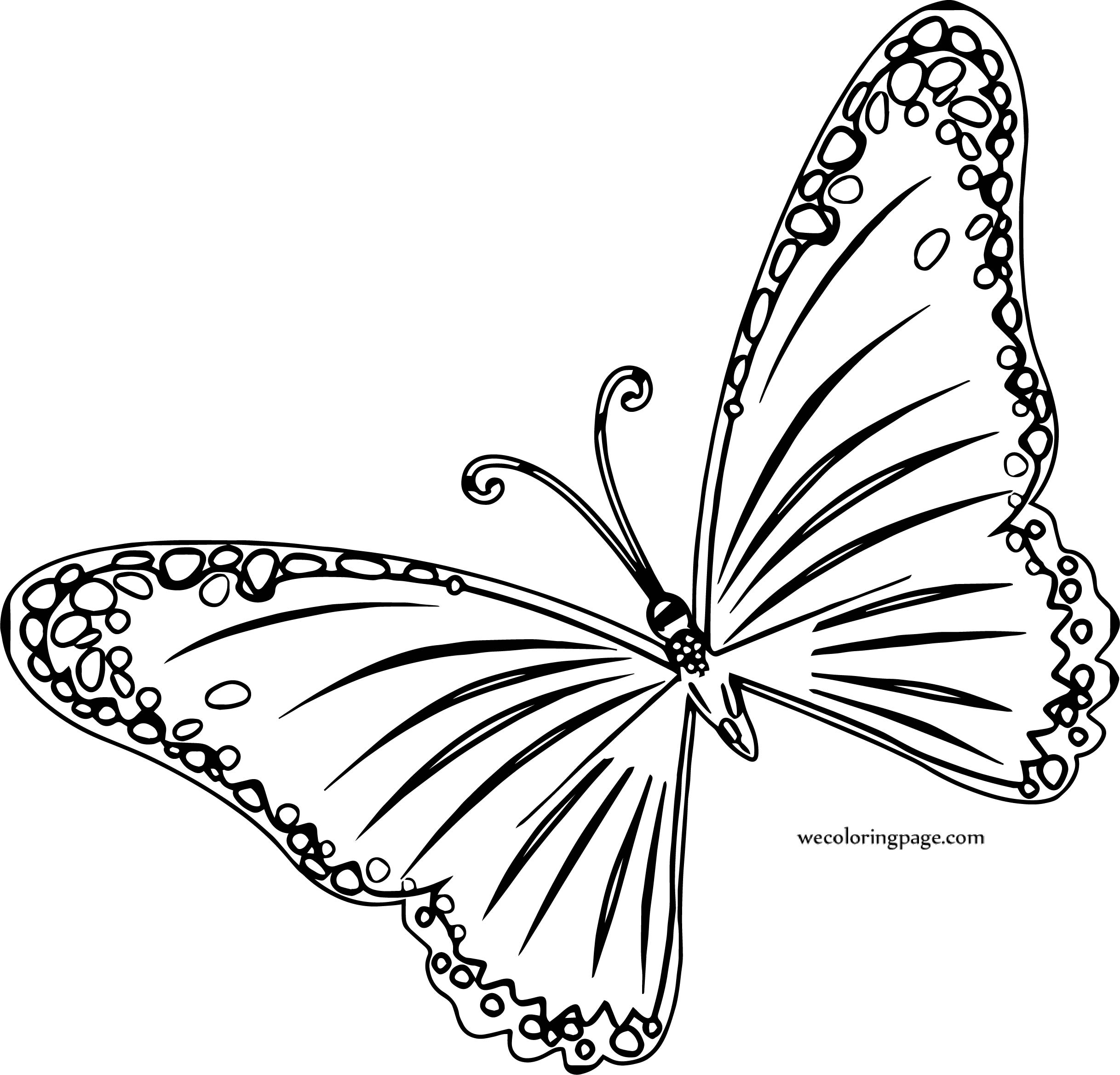 Transparent Orange Butterfly Coloring Page