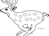 Baby Deer Running Spotted Deer Coloring Page