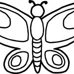 Basic Draw Butterfly Coloring Page