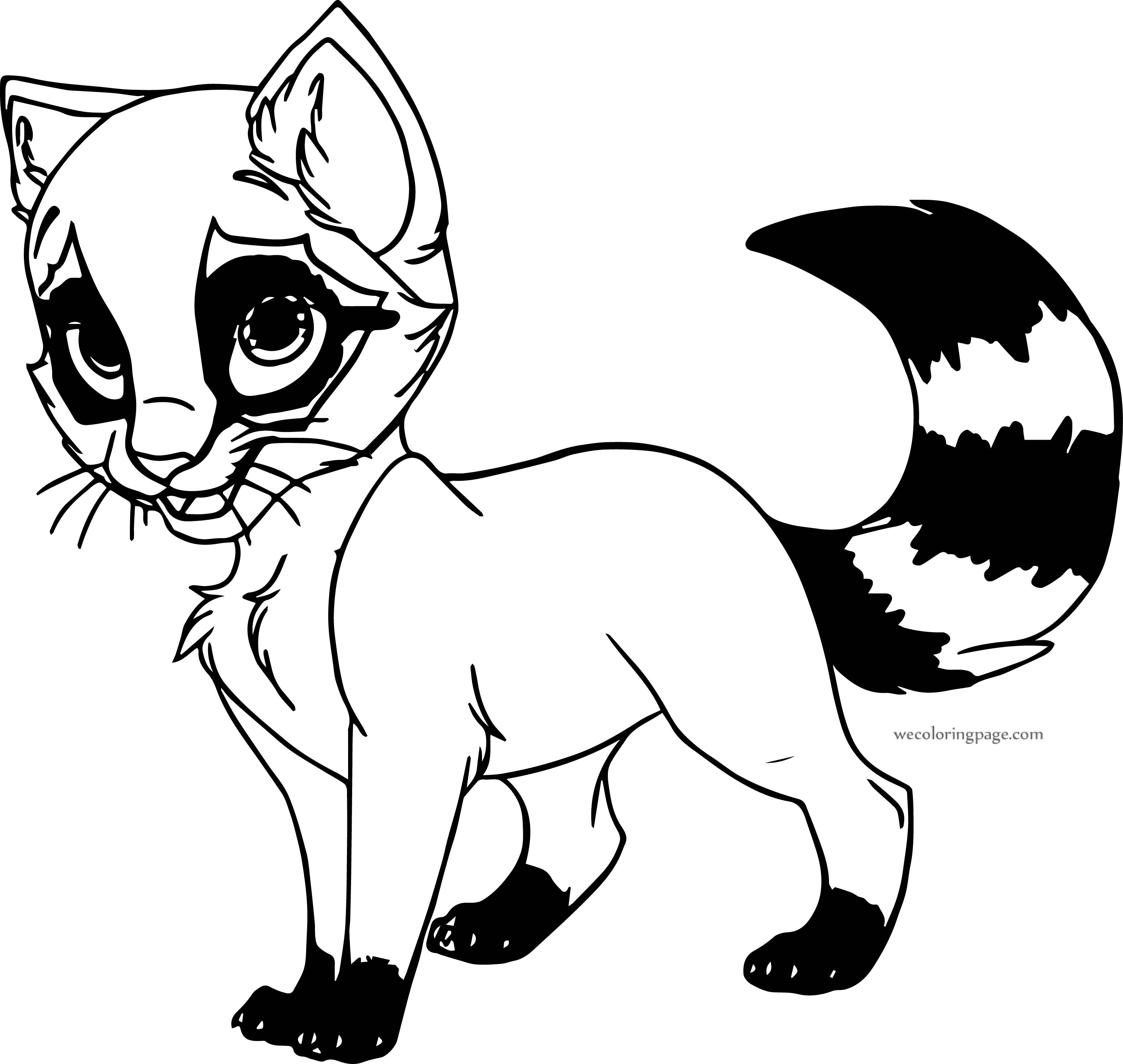Black White Tail Cat Coloring Page