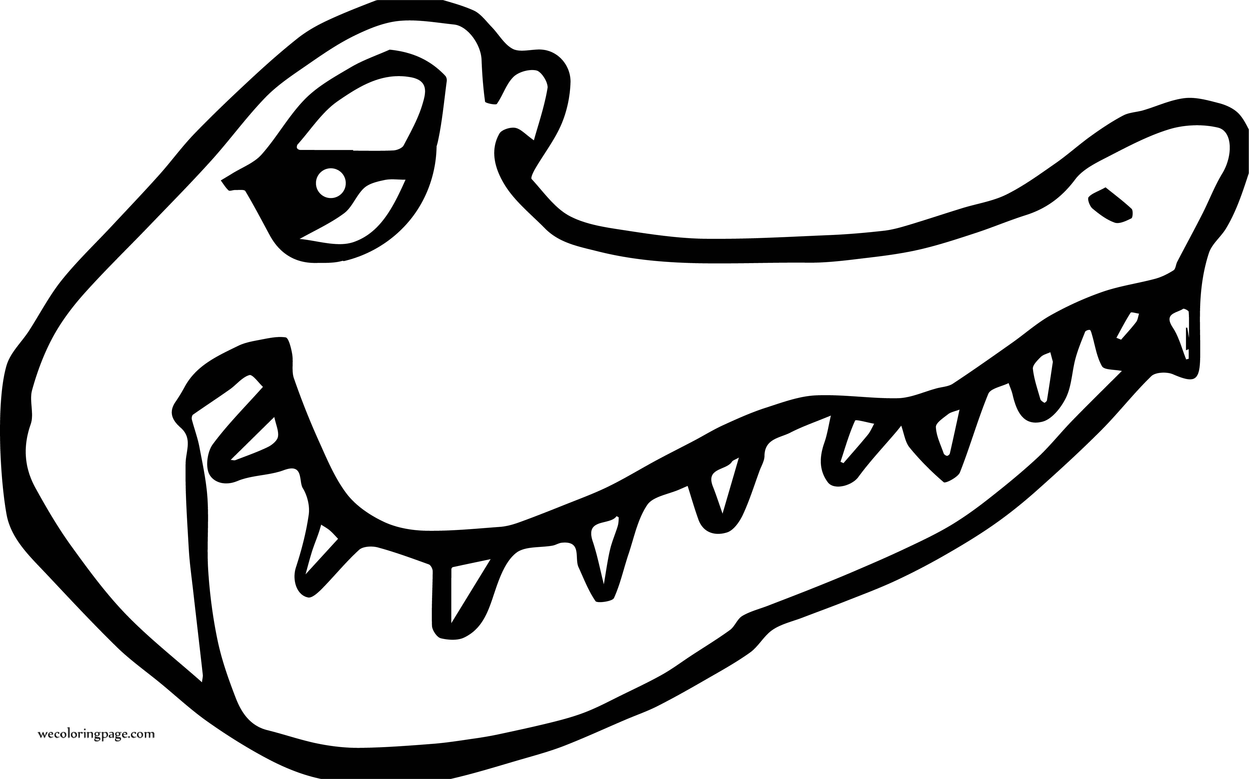 Crocodile Alligator Good Face Coloring Page