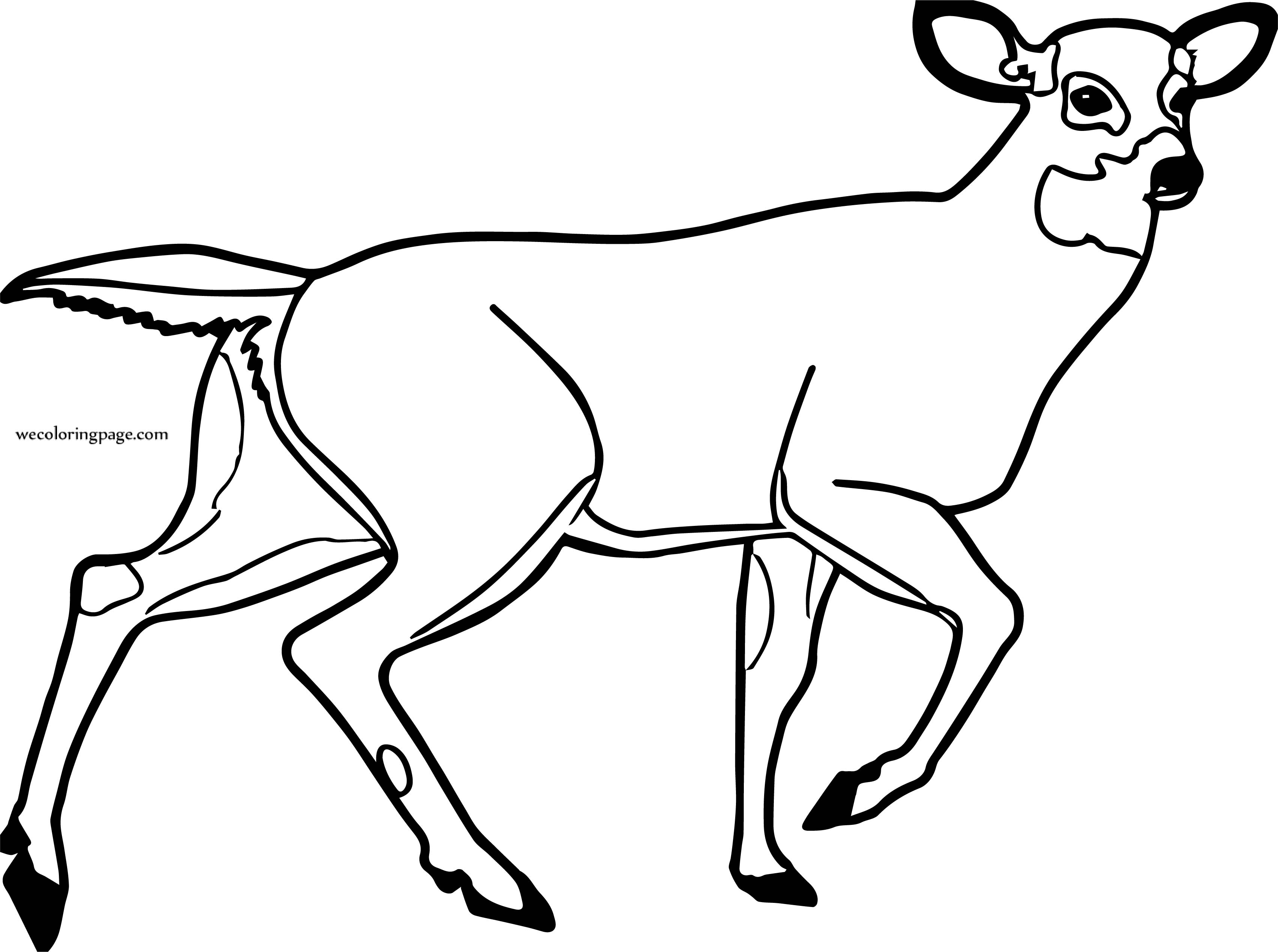 Deer Clip Art Black And White Free Images Coloring Page